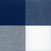 hastens color_bluecheck