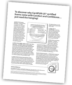 Download the Informational Flyer (PDF)